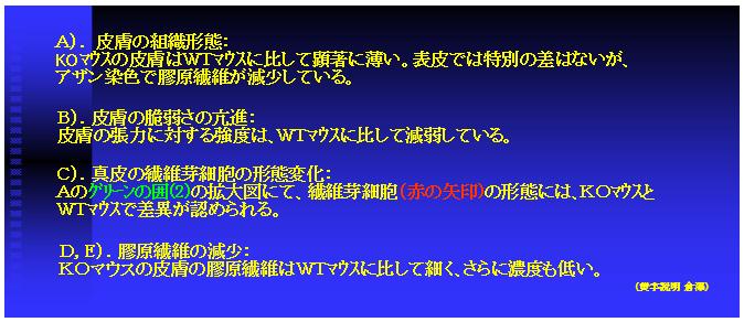 nanchi_3